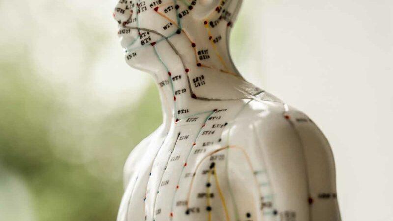 Behandlung Therapie Akupunktur